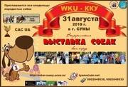 31.08.2019 - Всеукраинская ВЫСТАВКА CОБАК всех пород
