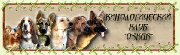 Приглашаем в Сумской клуб собаководства